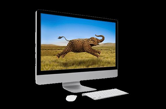 تبلیغ حافظه های SSHD شرکت Seagate - ظرفیت فیل و سرعت یوزپلنگ
