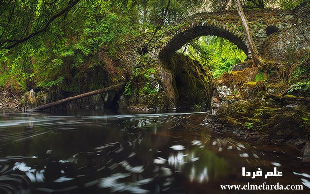 Hermitage-Bridge,-Scotland