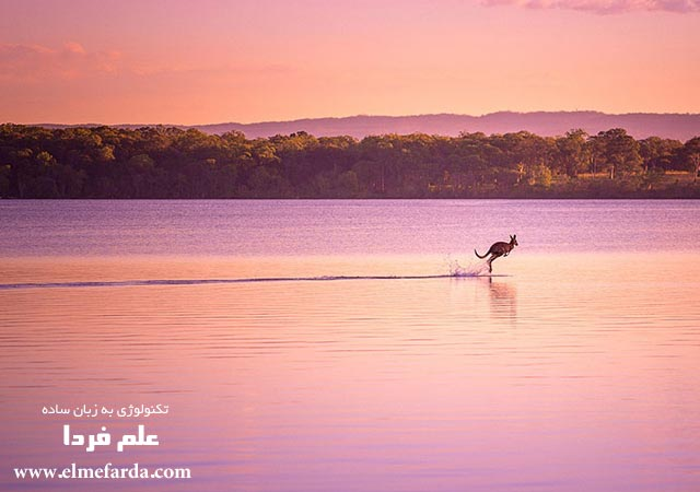 "Walking on Water,"" Queensland, Australia, Nature Category"