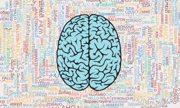 یادگیری یک زبان جدید میتونه مغز شما رو به شدت قدرتمند کنه و بیماری آلزایمر رو به تعویق بندازه!